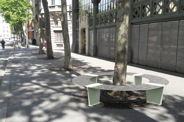 Quatre banquettes circulaires LUD verte faisant le tour d'un arbre incrustées