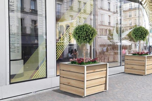 Deux jardinières NUT incrustées devant une devanture de magasin