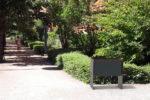Insertion 3D d'une corbeille de tri CUB dans un environnement réel, ici un parc public