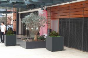 Insertion 3D de deux jardinières CUB grises dans un centre commercial