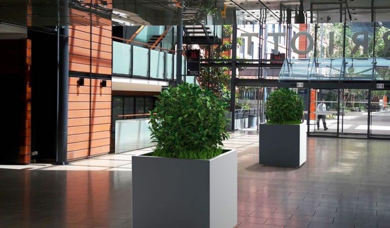 Insertion 3D de deux jardinières XL CUB grises dans un centre commercial
